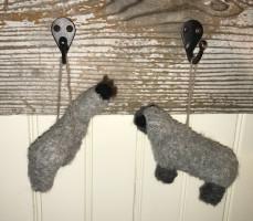 Luina greine alpacas and sheep
